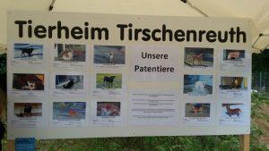 Tierheimfest Tirschenreuth 02.07.2017