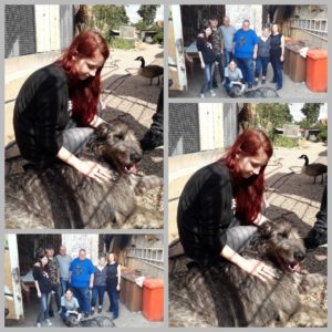 Ausflug in die Tierauffangstation 'Das Nest'