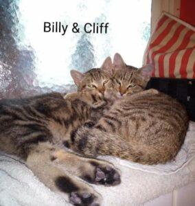 Hanni & Nanni, Billy & Cliff